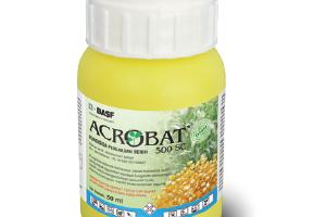 Cabrio Gold 183 Se Fungisida Basf Pertanian Dan Perlindungan Tanaman Indonesia